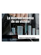 La microeconomía de un viztazo